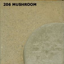 206mushroomlrg