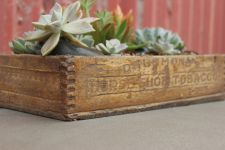 antique planter box